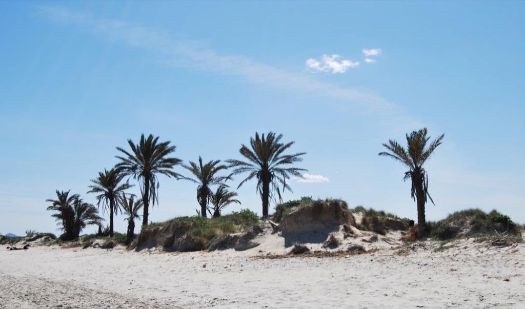 Playas-la-llana-barraca-quemada-1