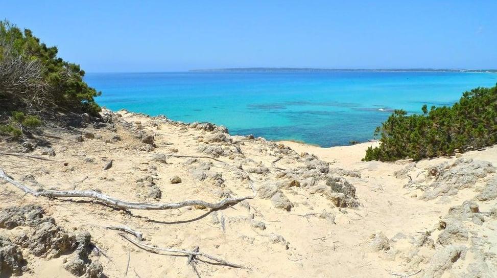 Playa-Es-Caragol-6