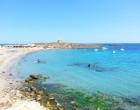 playa-isla-tabarca-playa-central-1
